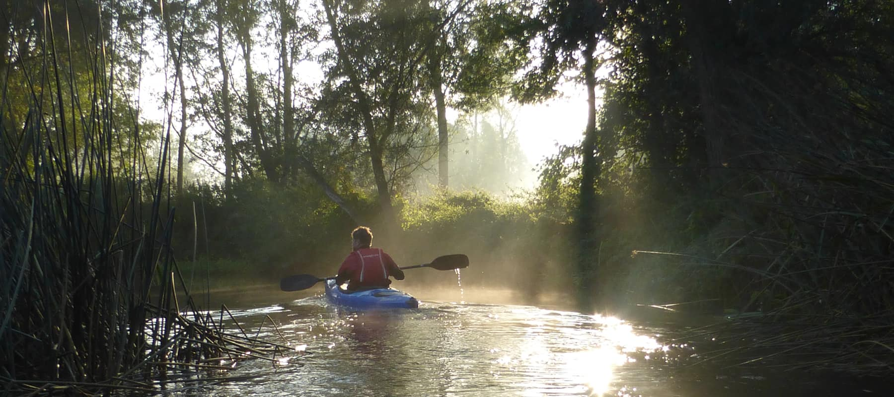 About Us. About the Canoe Foundation. Male paddler on leafy river.